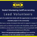 SVC are recruiting for lead volunteers!
